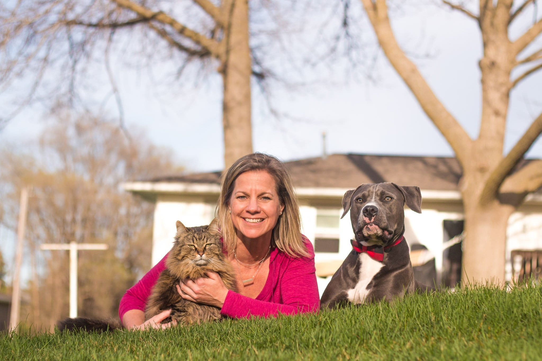 Pet Photography Asheville